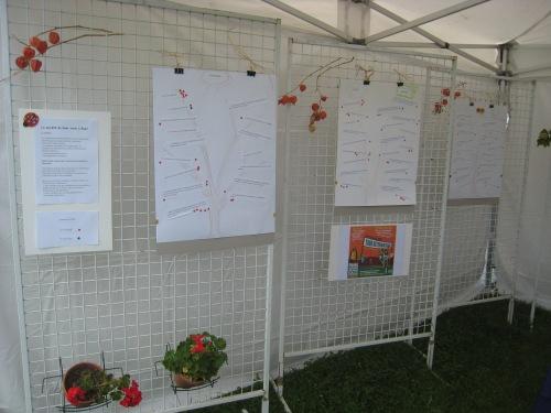 Les panneaux de La Chouette Valérienne lors du salon des associations de Rueil Malmaison le 06/09/2015, présentant les actions possibles à Rueil, dans l'esprit d'Alternatiba.